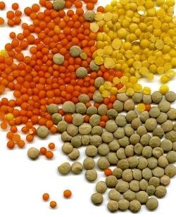 Special Crops & Pulses
